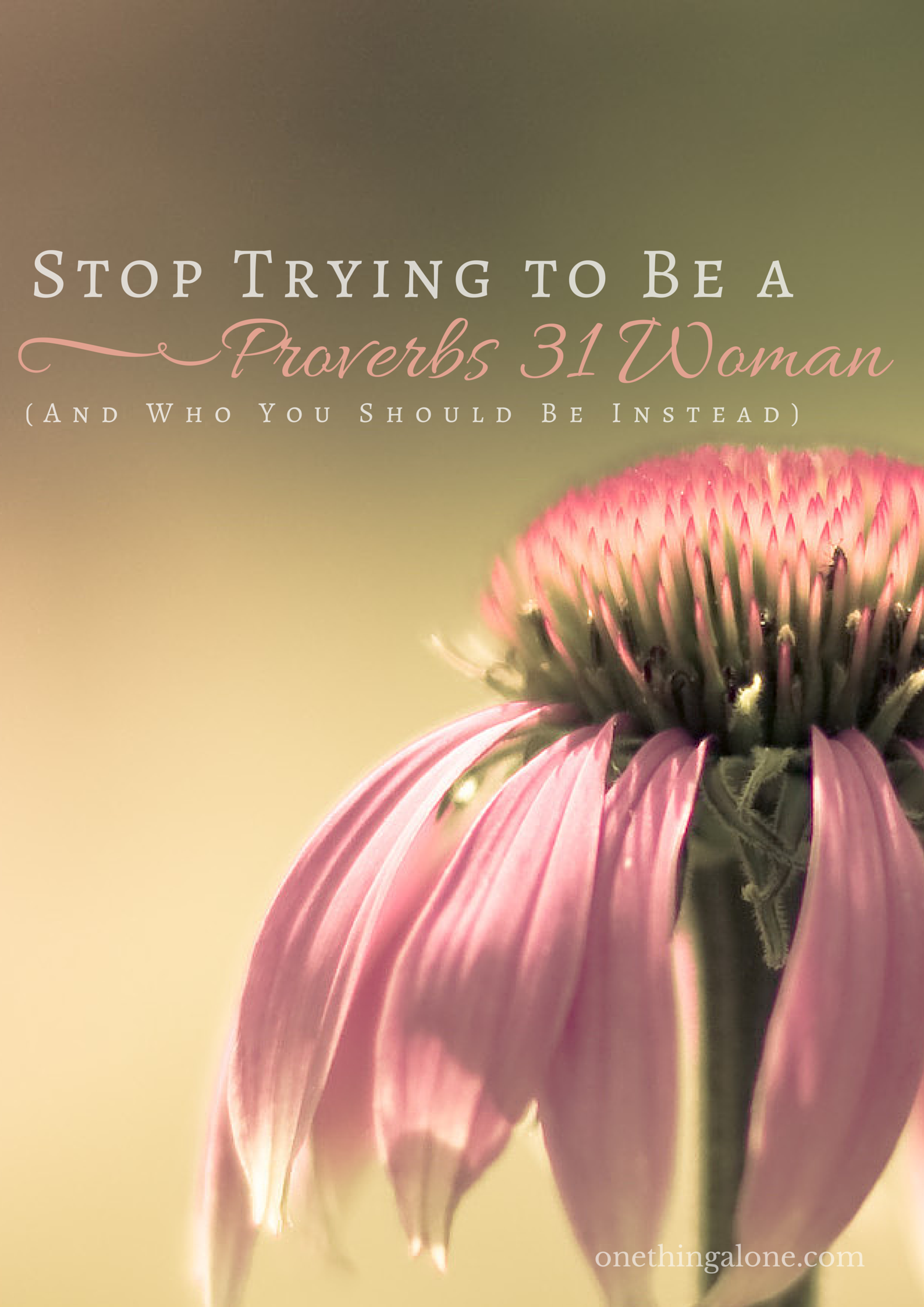 Stop trying to be a Proverbs 31 Woman (And Who You Should Be Instead)
